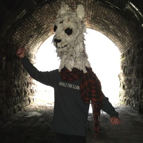 impale the llama's avatar