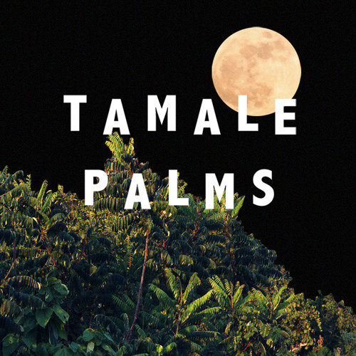 tamale palms's avatar