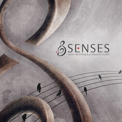 Senses Audio Production's avatar