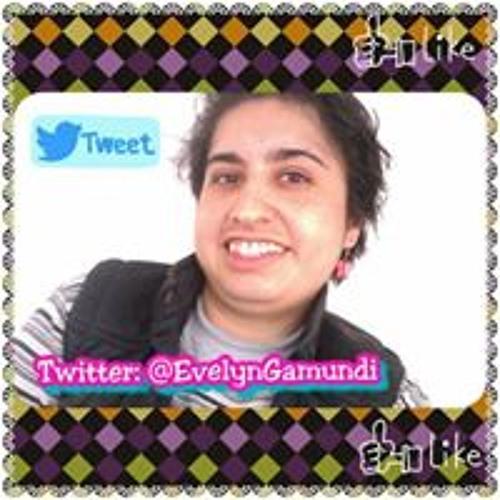 Evelyn Hernández Gamundi's avatar