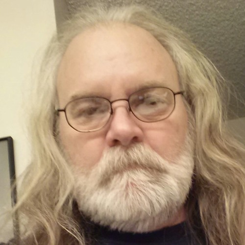 wastedrebel's avatar