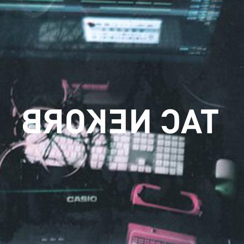 「 B R O K E N C A T」R E C O R D S 壊れた猫レコード's avatar