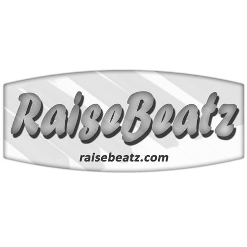 RaiseBeatz's avatar
