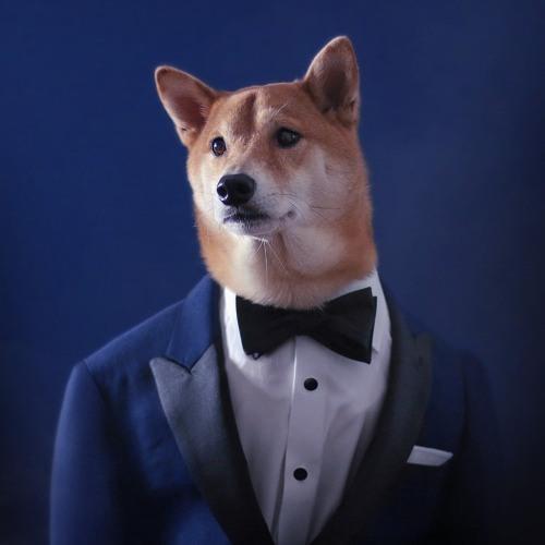 TylerTheCreator13's avatar