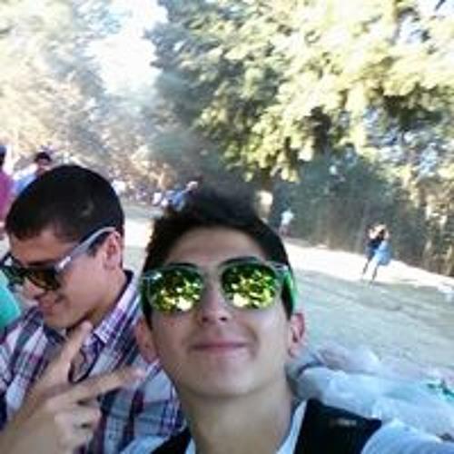 Cristian Andres Sanchez's avatar