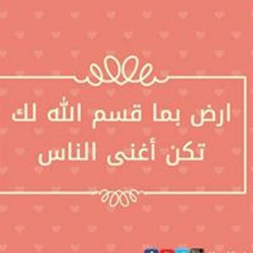 NO-ur N. Salah's avatar