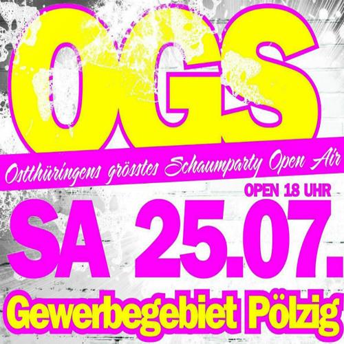 OGS-Festival's avatar