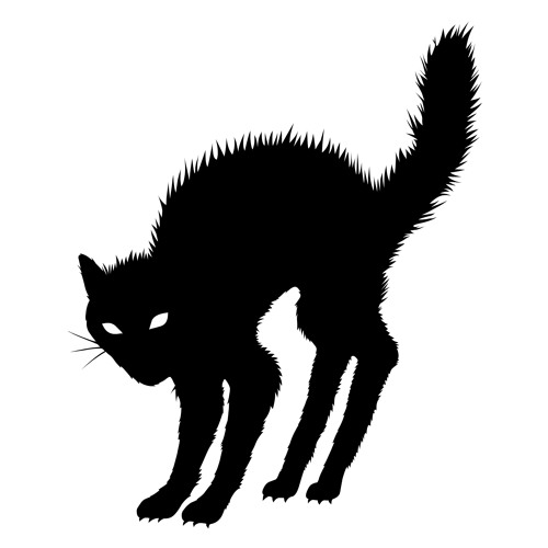 Red blood cat's avatar