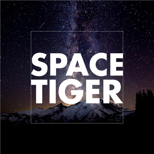 SPACE TIGER's avatar