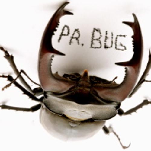 pr.bug's avatar