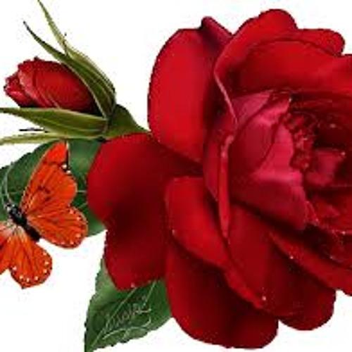 HAYTHAM1451980's avatar