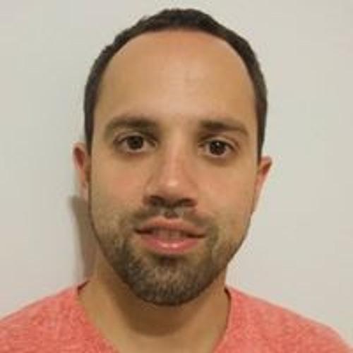 Pedro Ivo Lubos's avatar