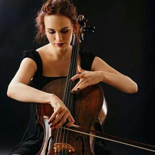 Mai Elsalhy's avatar