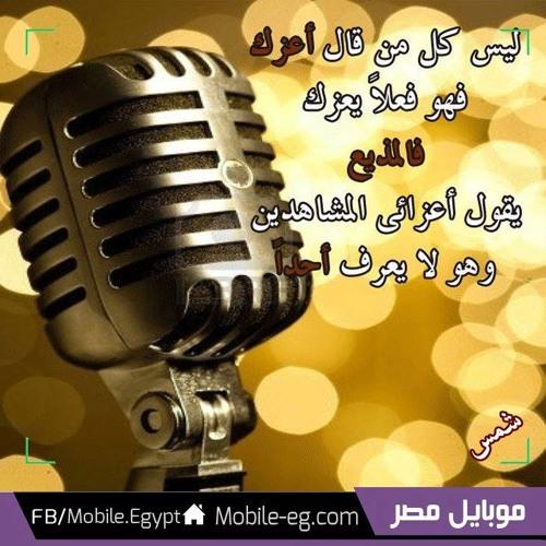 Habiba Tarek Elfeky's avatar