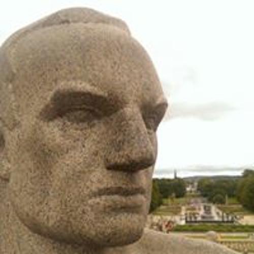 Hans Koch's avatar