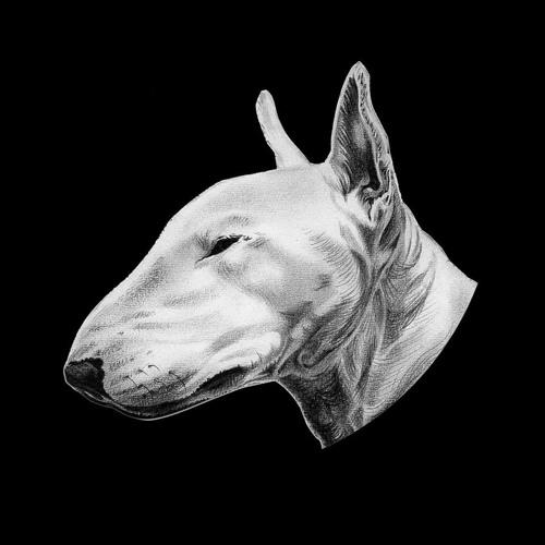 Michael Rogava 1's avatar
