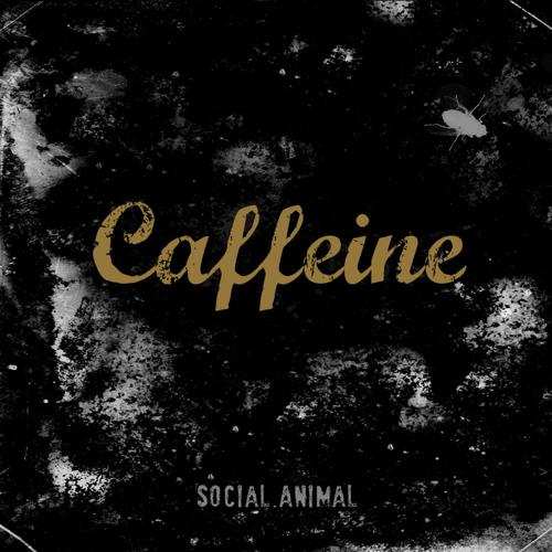 CAFFEINE band's avatar