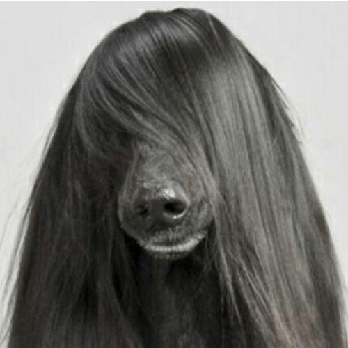 DR. COR's avatar