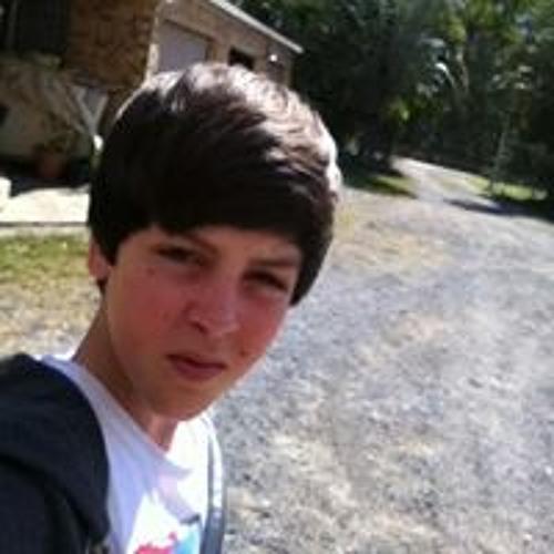 Daniel Went's avatar