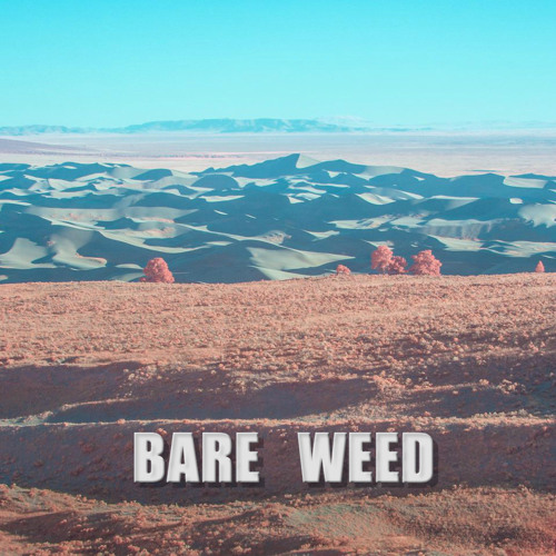 BARE WEED's avatar