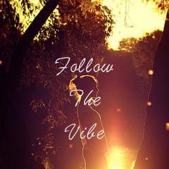 Follow The Vibe