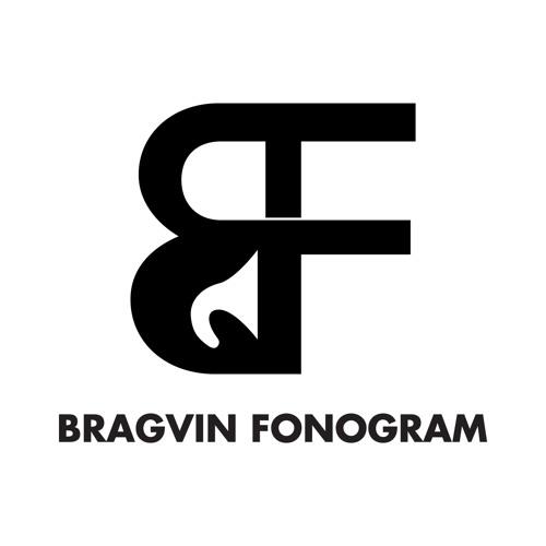 Bragvin Fonogram's avatar