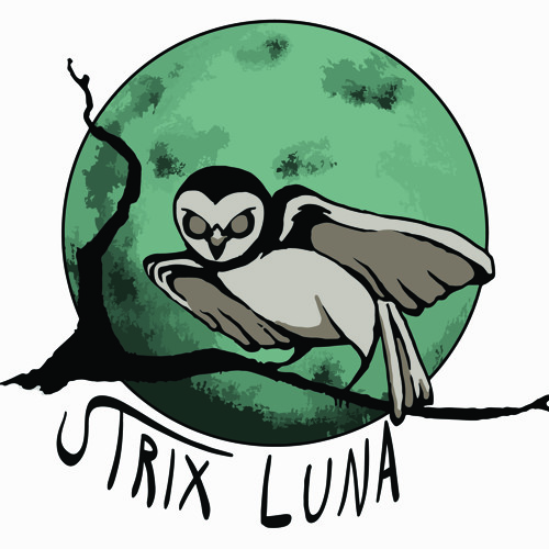 Strix Luna's avatar