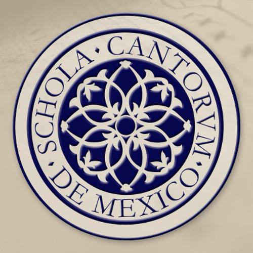 ScholaCantorum México's avatar