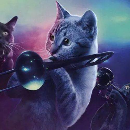 U Shot My Cat's avatar