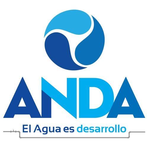 ANDA Oficial's avatar