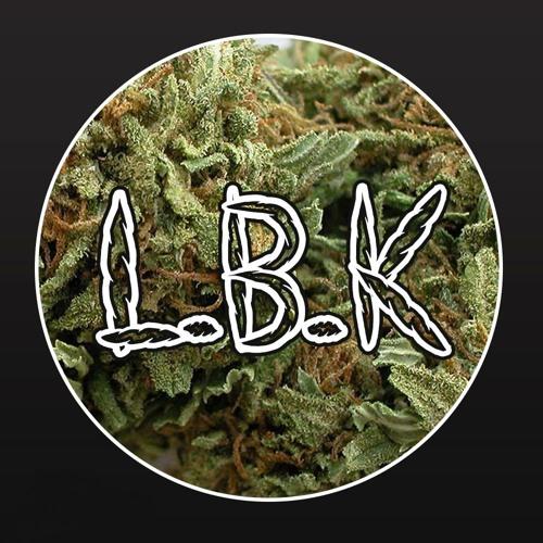 -L.B.K-'s avatar