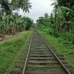 Jungletrain 105.9