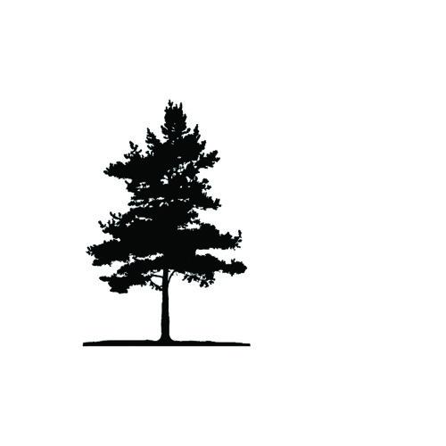 BlacktreeMusic's avatar