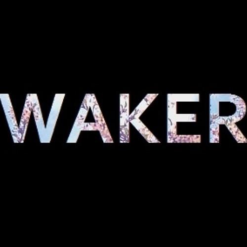 Waker's avatar