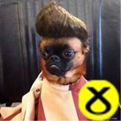 Jamie Sneddon's avatar