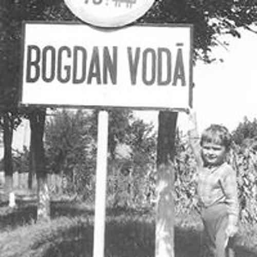 Bogdan Voda's avatar
