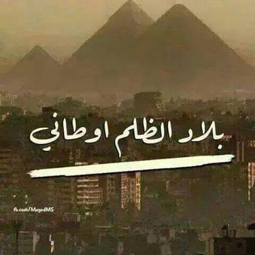 Mohamed Abd Alla 3's avatar