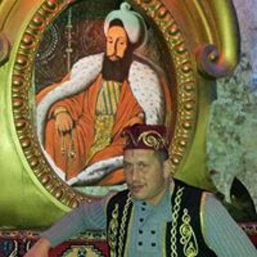 Alpay Yirmibes's avatar