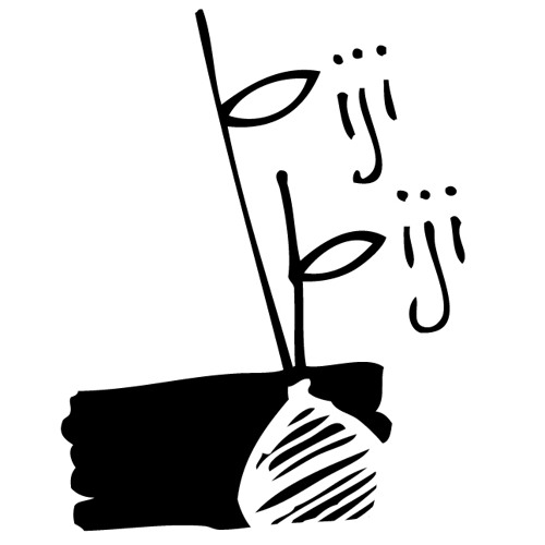 Biji-biji initiative's avatar