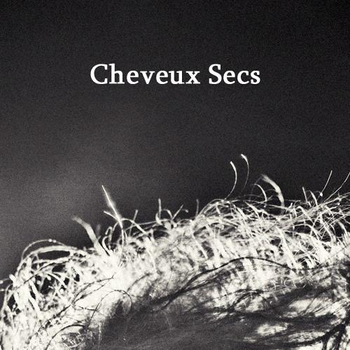 Cheveux Secs's avatar