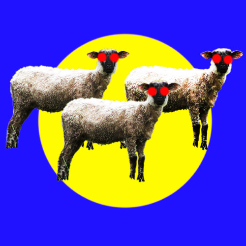 les moutons tondus's avatar