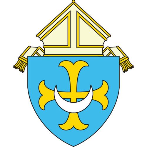 Trenton Diocese's avatar