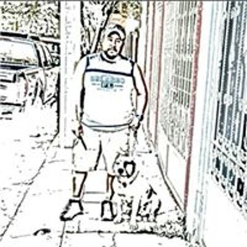 Max Saucedo Gomez's avatar