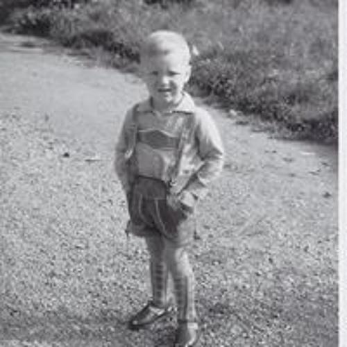 Robert Zimmermann's avatar