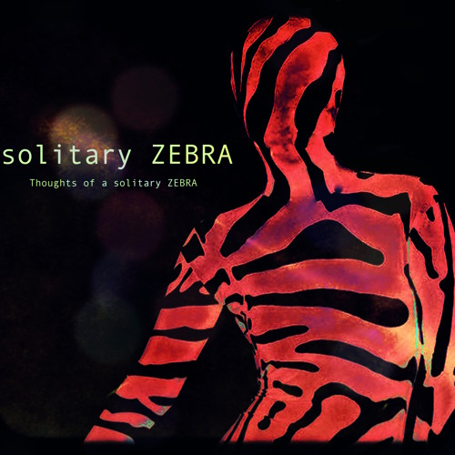 solitary ZEBRA's avatar