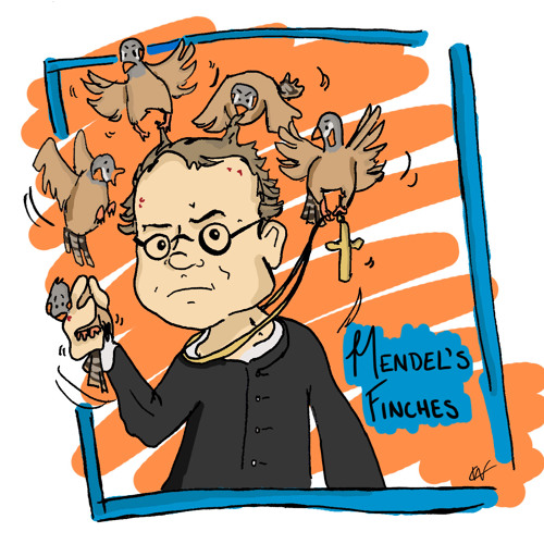 Mendel's Finches's avatar