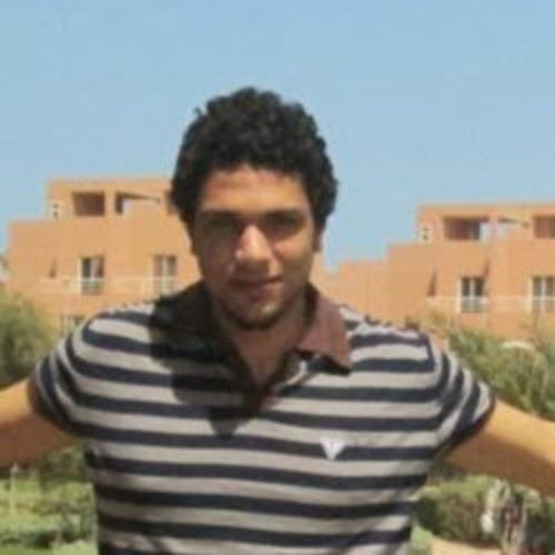Moamen Adel's avatar