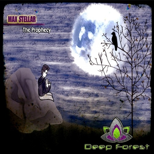 Max Stellar's avatar