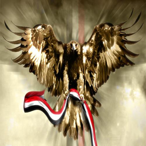 Ta7yaMasr's avatar