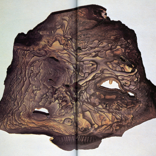 Stones's avatar